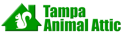 Tampa Animal Attic